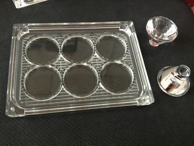 led透镜,大功率led光学透镜,XJ-28.5-6*1汽车灯罩